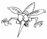 mosquito-1-150x127