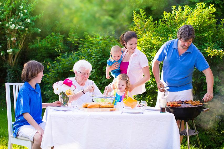 Mosquito Enemy - Rockingham County Family enjoying bug-free barbecue