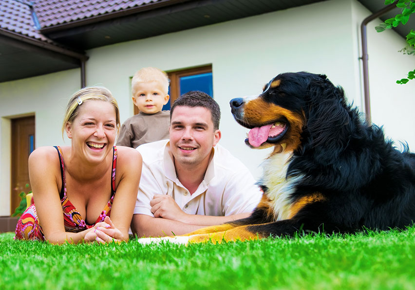 Mosquito Enemy - Pelham Hillsborough County family with their dog in the grass